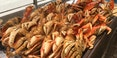 dungerness-crab-fishermans-wharf-1280.jpg